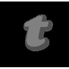 Letter t 100mm