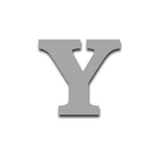 Letter Y 120mm Serif
