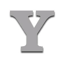 Letter Y 150mm Serif