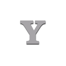 Letter Y 90mm Serif